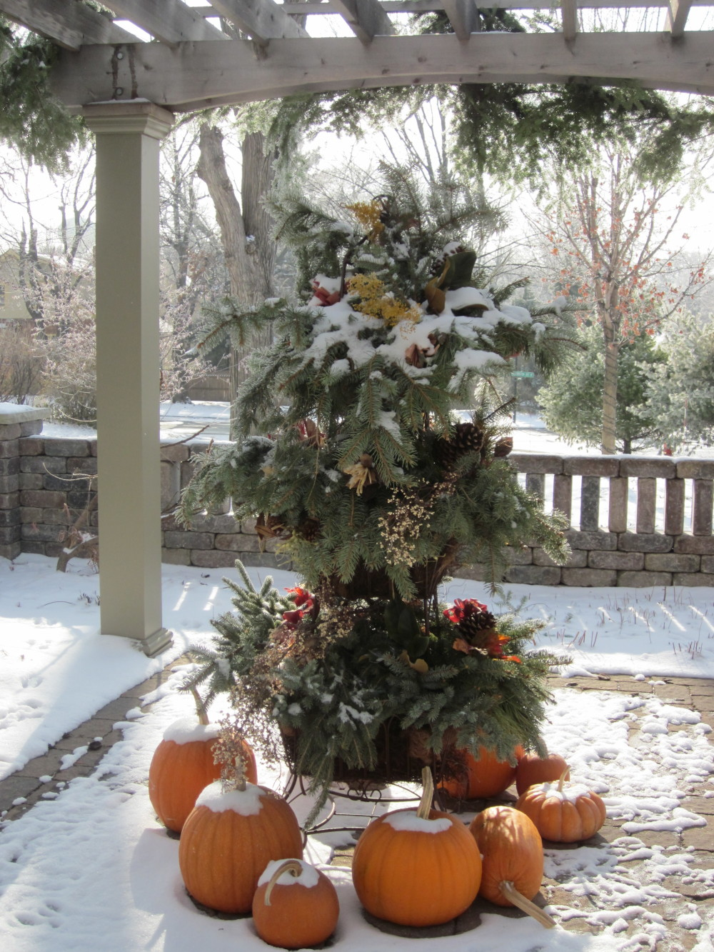 Decorating for the holidays... with the first dusting of snow.
